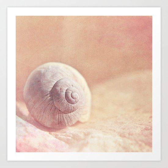 APRICOTEE - Monochrome still life with pink snail shell  Art Print