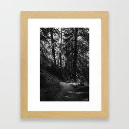 Big Sur Hike Framed Art Print