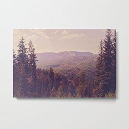 The View Metal Print