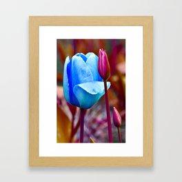 Majestic Tulips Framed Art Print