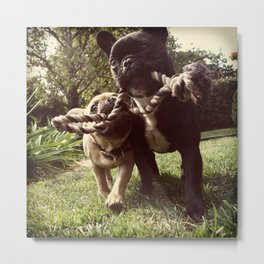 Brie and Diesel Metal Print