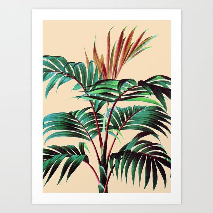 Tropic 02 Art Print