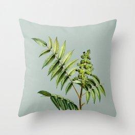 Vintage Staghorn Sumac Botanical Illustration on Mint Green Throw Pillow