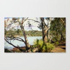 Australian Native Flora Canvas Print