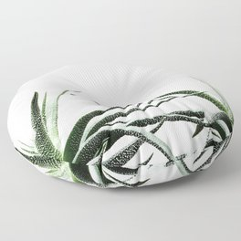 Succulents - Haworthia attenuata - Plant Lover - Botanic Specimens delivering a fresh perspective Floor Pillow