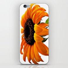 FLOWER 032 iPhone & iPod Skin
