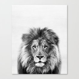Lion, Animal, Minimal, Trendy decor, Nursery, Interior, Wall art, Photo Canvas Print