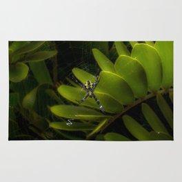 Tropical spider Rug