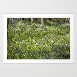 Woodland Flora Art Print
