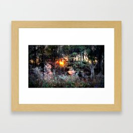 Sunset Forest : Where The Fairies Dwell Framed Art Print