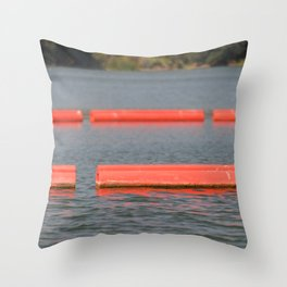 Lake Barriers Throw Pillow