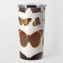Vintage Scientific Insect Butterfly Moth Biological Hand Drawn Species Art Illustration Travel Mug