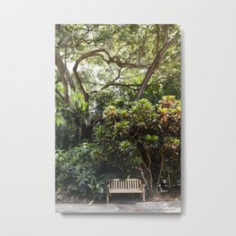 The Reading Bench & The Croton Tree Metal Print