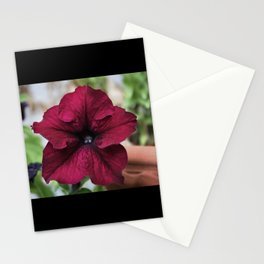 """Gorgeous Flower"" by Madrone Candea Stationery Cards"