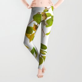 Autumnal Warbler Bird Leggings