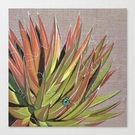 Yucca filifera with beetle Canvas Print