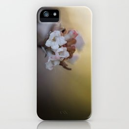 The Beauty of Levity. iPhone Case