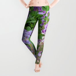 Lupins Leggings