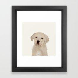 little labrador Framed Art Print