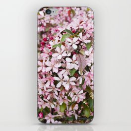Apricot blossoms iPhone Skin