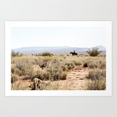 on a horse with no name Art Print