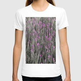 Lavander fields T-shirt
