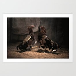 Cockfighting 1 Art Print