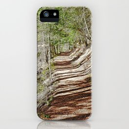 FOREST OF PARALLEL SHADOWS iPhone Case