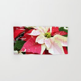 Red and White Poinsettia Hand & Bath Towel