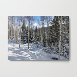 Winter forest - Carol Highsmith Metal Print