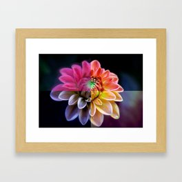 Four Piece Flower (For Peace) Framed Art Print