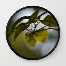 Just Leaves and Shadows -A Nature art Print Wall Clock