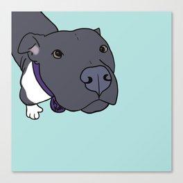 Faith The Resilient Pit Bull Canvas Print