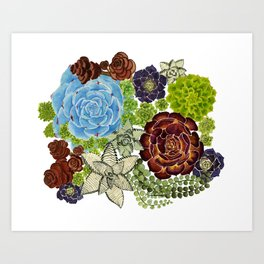 """The Monroe"" Watercolor Succulent, Botanical watercolor, Art Print"