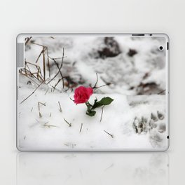 Rose in the snow Laptop & iPad Skin