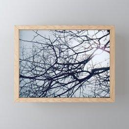 Winter Sun Framed Mini Art Print