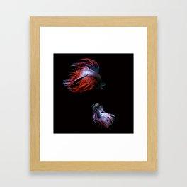 Betta No.2 Framed Art Print