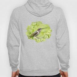 Hummingbird XIV Hoody