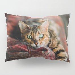 Cat eyes Pillow Sham