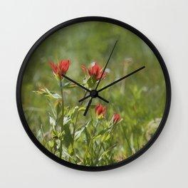 Indian Paintbrush Painterly Wall Clock