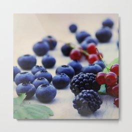 Fresh wild berries, blackberries, blueberries and currants in still life Metal Print