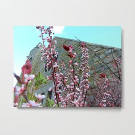 Old Stone Church with Flowers Metal Print