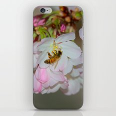 Cherry Blossoms & Bee iPhone Skin