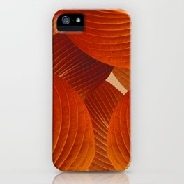 Leaves in Terracotta Color #decor #society6 #buyart iPhone Case