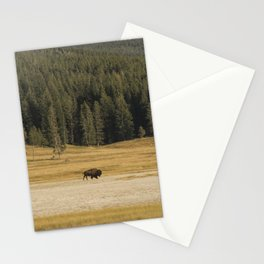 Take it in Stride Stationery Cards