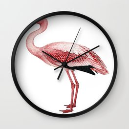 Pink Flamingo Isolated Wall Clock
