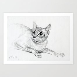 Siamese Cat Hunting Pencil drawing Pet illustration Decor for cat lover Art Print