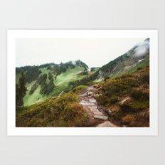 Rocky Cascade Trail Art Print