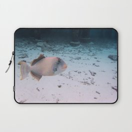 Maldives Wildlife Coral Fish In Turquoise sea Laptop Sleeve
