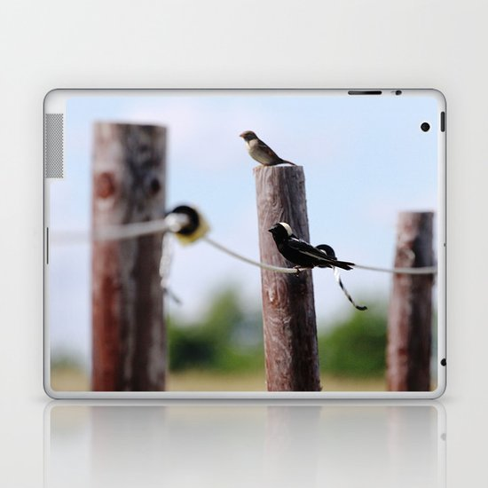 Bobolinks Laptop & iPad Skin